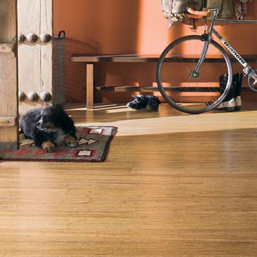 Teragren Bamboo Flooring | Warrenville, IL