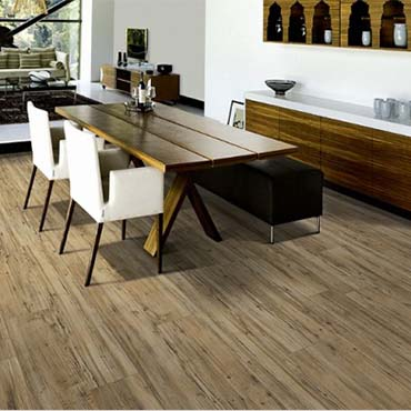 Kraus Luxury Vinyl Floors | Warrenville, IL